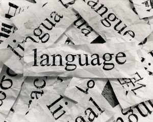Alapfokú nyelvvizsga bevált módszerek alapján